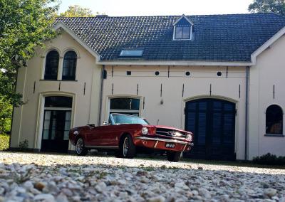Foto van Mustang